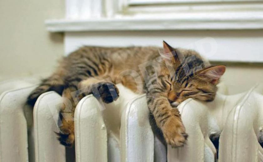 Отопление в Новомосковске для населения не подорожает!