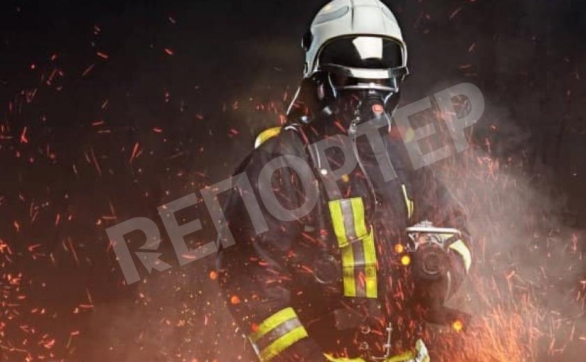 Под Новомосковском горел сухостой