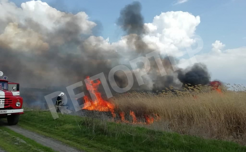 Под Новомосковском произошел пожар в экосистеме