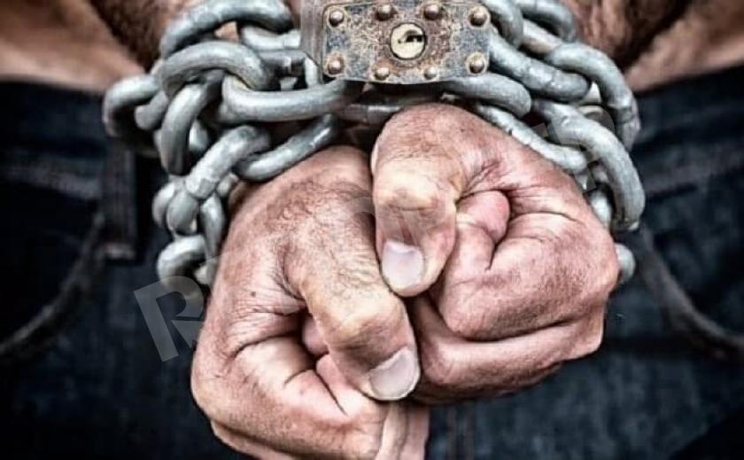 Как со скотом…Под Новомосковском функционировала ферма с рабами
