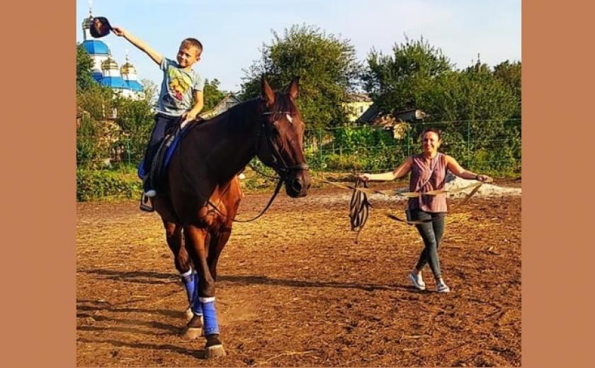 ДЮСШ в Орловщине продает коня. «Только не на мясо»